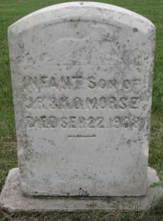 MORSE, INFANT SON - Lincoln County, South Dakota   INFANT SON MORSE - South Dakota Gravestone Photos