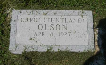 OLSON, CAROL - Lincoln County, South Dakota | CAROL OLSON - South Dakota Gravestone Photos