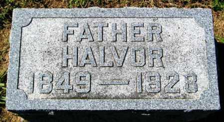 OLSON, HALVOR - Lincoln County, South Dakota | HALVOR OLSON - South Dakota Gravestone Photos