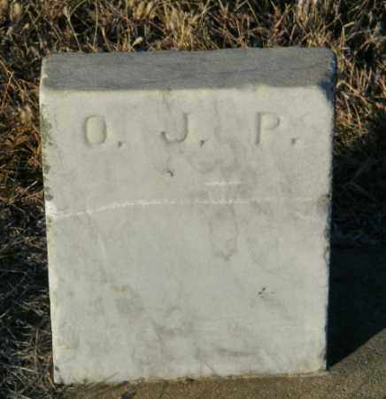 PAULSON, OLGA J - Lincoln County, South Dakota | OLGA J PAULSON - South Dakota Gravestone Photos