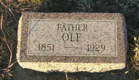 RIKANSRUD, OLE - Lincoln County, South Dakota | OLE RIKANSRUD - South Dakota Gravestone Photos