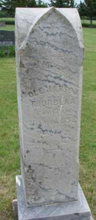 THORBLAA, OLE HANSON - Lincoln County, South Dakota | OLE HANSON THORBLAA - South Dakota Gravestone Photos
