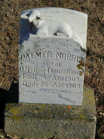 THORMODSGAARD, PALMER NORRIS - Lincoln County, South Dakota | PALMER NORRIS THORMODSGAARD - South Dakota Gravestone Photos