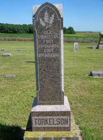 TORKELSON, OLE - Lincoln County, South Dakota | OLE TORKELSON - South Dakota Gravestone Photos