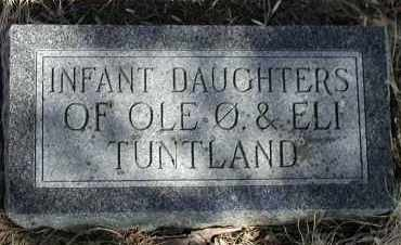 TUNTLAND, INFANT DAUGHTER - Lincoln County, South Dakota | INFANT DAUGHTER TUNTLAND - South Dakota Gravestone Photos