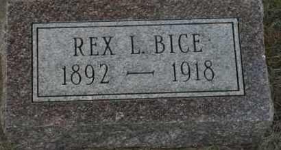 BICE, REX L - Lyman County, South Dakota | REX L BICE - South Dakota Gravestone Photos