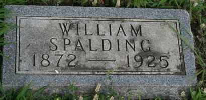 SPALDING, WILLIAM - Lyman County, South Dakota | WILLIAM SPALDING - South Dakota Gravestone Photos