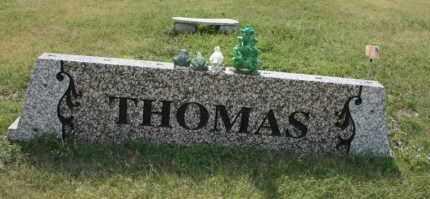 THOMAS, STEPHEN PAUL - Lyman County, South Dakota | STEPHEN PAUL THOMAS - South Dakota Gravestone Photos