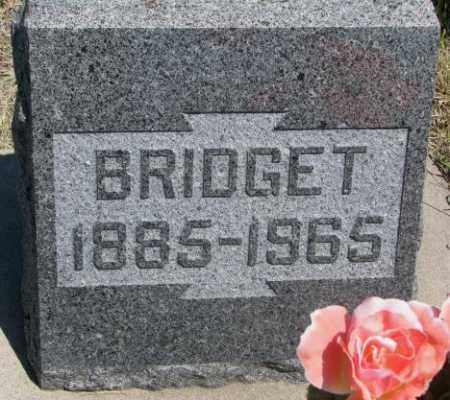 TRACY, BRIDGET - Lyman County, South Dakota | BRIDGET TRACY - South Dakota Gravestone Photos