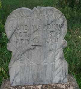 WELDING, DAVID - Lyman County, South Dakota   DAVID WELDING - South Dakota Gravestone Photos