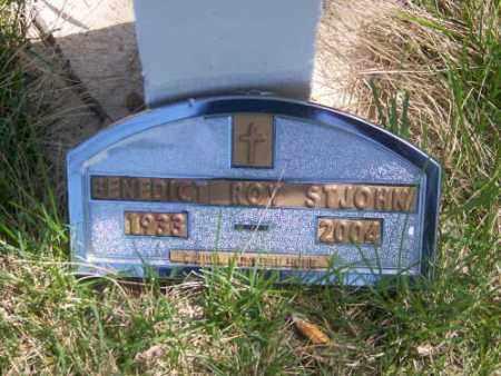 ST. JOHN, BENEDICT ROY - Marshall County, South Dakota | BENEDICT ROY ST. JOHN - South Dakota Gravestone Photos