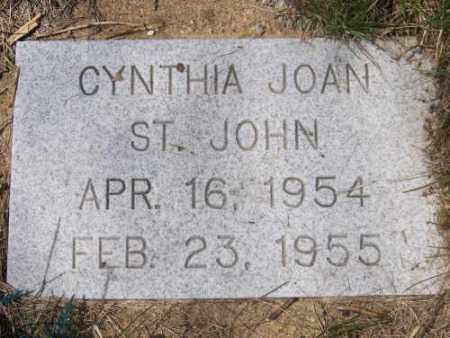 ST. JOHN, CYNTHIA JOAN - Marshall County, South Dakota | CYNTHIA JOAN ST. JOHN - South Dakota Gravestone Photos