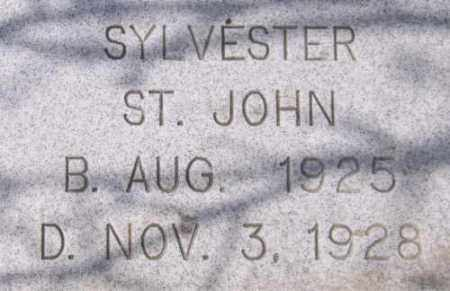 ST. JOHN, SYLVESTER - Marshall County, South Dakota   SYLVESTER ST. JOHN - South Dakota Gravestone Photos