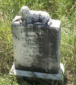 WASIN, NORMAN - Marshall County, South Dakota | NORMAN WASIN - South Dakota Gravestone Photos