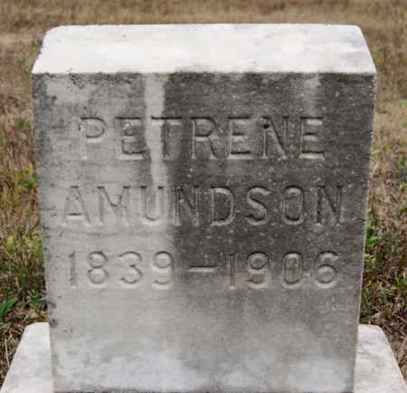 AMUNDSON, PETRENE - McCook County, South Dakota   PETRENE AMUNDSON - South Dakota Gravestone Photos