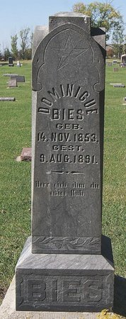 BIES, DOMINGUE - McCook County, South Dakota | DOMINGUE BIES - South Dakota Gravestone Photos
