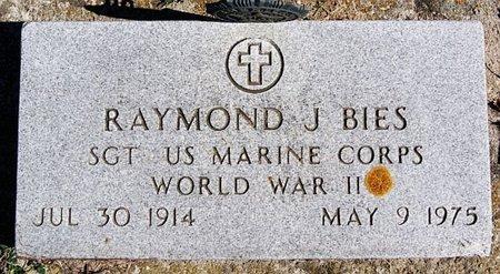 BIES, RAYMOND J (WWII) - McCook County, South Dakota   RAYMOND J (WWII) BIES - South Dakota Gravestone Photos
