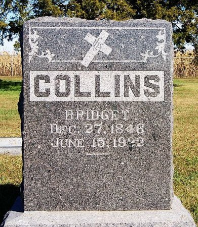 COLLINS, BRIDGET - McCook County, South Dakota | BRIDGET COLLINS - South Dakota Gravestone Photos