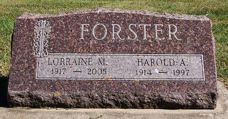 FORSTER, HAROLD A - McCook County, South Dakota | HAROLD A FORSTER - South Dakota Gravestone Photos