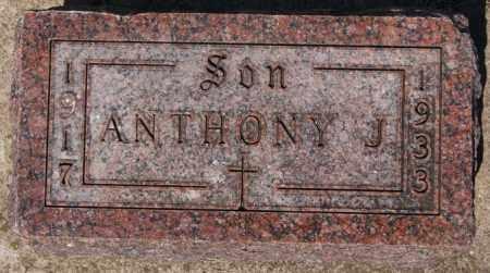 HONRATH, ANTHONY J - McCook County, South Dakota | ANTHONY J HONRATH - South Dakota Gravestone Photos