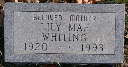 WHITING, LILY MAE - McCook County, South Dakota   LILY MAE WHITING - South Dakota Gravestone Photos