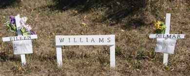WILLIAMS, DELMAR - McCook County, South Dakota | DELMAR WILLIAMS - South Dakota Gravestone Photos