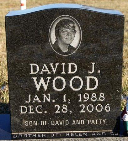 WOOD, DAVID J - McCook County, South Dakota | DAVID J WOOD - South Dakota Gravestone Photos