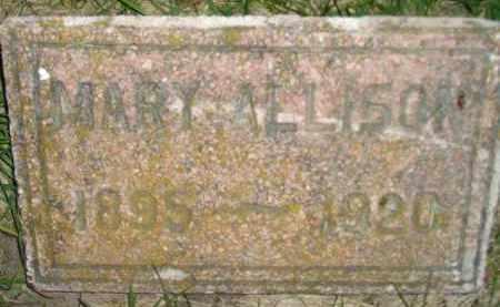 ALLISON, MARY - Miner County, South Dakota | MARY ALLISON - South Dakota Gravestone Photos