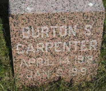 CARPENTER, BURTON S. - Miner County, South Dakota | BURTON S. CARPENTER - South Dakota Gravestone Photos