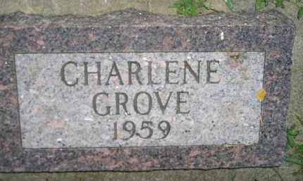 GROVE, CHARLENE - Miner County, South Dakota | CHARLENE GROVE - South Dakota Gravestone Photos