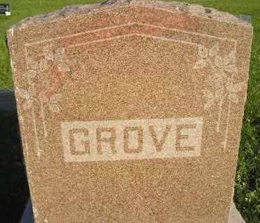 GROVE, FAMILY STONE - Miner County, South Dakota | FAMILY STONE GROVE - South Dakota Gravestone Photos