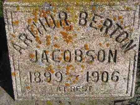 JACOBSON, ARTHUR BERTON - Miner County, South Dakota   ARTHUR BERTON JACOBSON - South Dakota Gravestone Photos