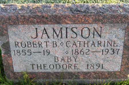 JAMSION, CATHARINE - Miner County, South Dakota | CATHARINE JAMSION - South Dakota Gravestone Photos
