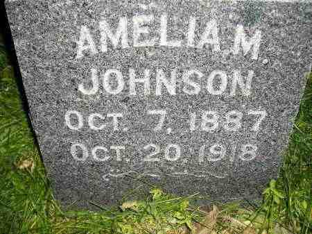 JOHNSON, AMELIA M. - Miner County, South Dakota | AMELIA M. JOHNSON - South Dakota Gravestone Photos
