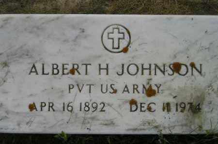 JOHNSON, ALBERT H. (MILITARY) - Miner County, South Dakota | ALBERT H. (MILITARY) JOHNSON - South Dakota Gravestone Photos