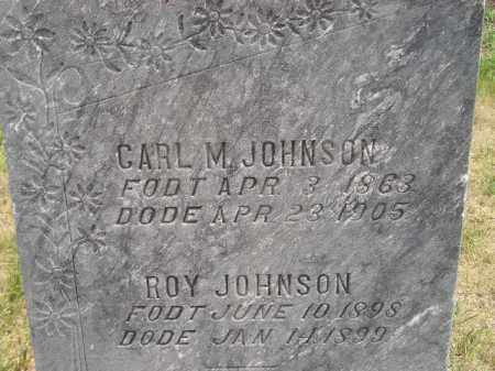 JOHNSON, CARL M. - Miner County, South Dakota | CARL M. JOHNSON - South Dakota Gravestone Photos