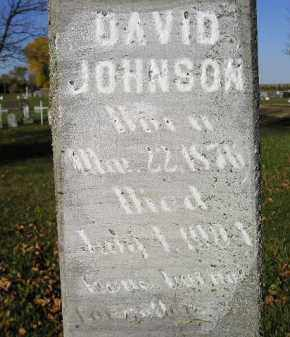 JOHNSON, DAVID - Miner County, South Dakota | DAVID JOHNSON - South Dakota Gravestone Photos