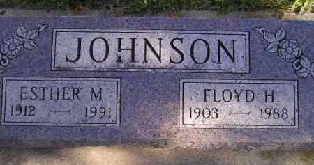 JOHNSON, FLOYD H. - Miner County, South Dakota   FLOYD H. JOHNSON - South Dakota Gravestone Photos