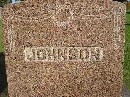 JOHNSON, FAMILY STONE - Miner County, South Dakota | FAMILY STONE JOHNSON - South Dakota Gravestone Photos