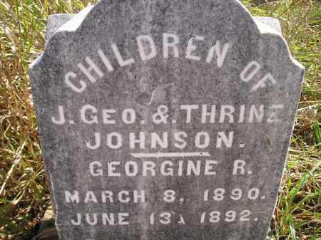 JOHNSON, GEORGINE R. - Miner County, South Dakota   GEORGINE R. JOHNSON - South Dakota Gravestone Photos