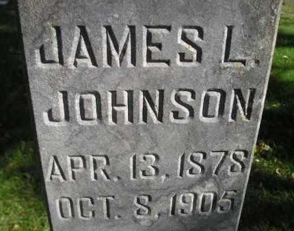 JOHNSON, JAMES L. - Miner County, South Dakota | JAMES L. JOHNSON - South Dakota Gravestone Photos