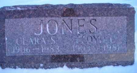 JONES, LLOYD C. - Miner County, South Dakota | LLOYD C. JONES - South Dakota Gravestone Photos