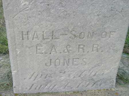 JONES, HALL - Miner County, South Dakota | HALL JONES - South Dakota Gravestone Photos