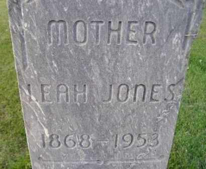 JONES, LEAH - Miner County, South Dakota | LEAH JONES - South Dakota Gravestone Photos