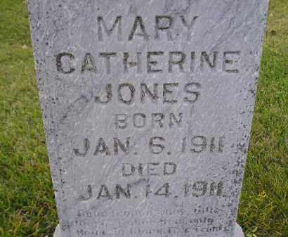 JONES, MARY CATHERINE - Miner County, South Dakota | MARY CATHERINE JONES - South Dakota Gravestone Photos