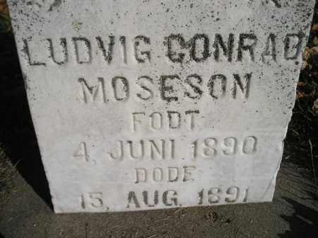 MOSESON, LUDVIG CONRAD - Miner County, South Dakota | LUDVIG CONRAD MOSESON - South Dakota Gravestone Photos