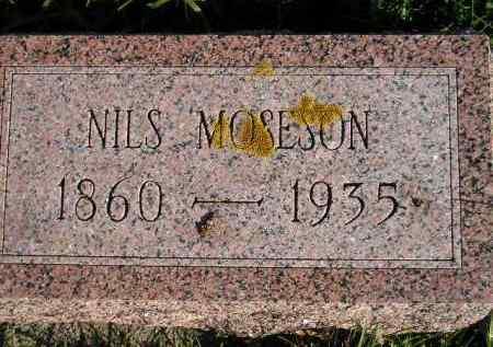 MOSESON, NILS - Miner County, South Dakota   NILS MOSESON - South Dakota Gravestone Photos