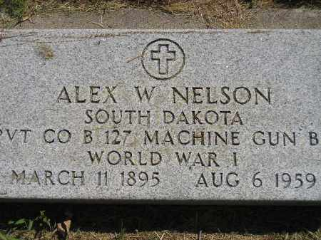 NELSON, ALEX W. (WW I) - Miner County, South Dakota | ALEX W. (WW I) NELSON - South Dakota Gravestone Photos