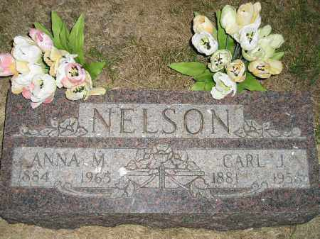 NELSON, ANNA M. - Miner County, South Dakota | ANNA M. NELSON - South Dakota Gravestone Photos