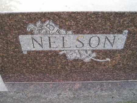 NELSON, FAMILY STONE - Miner County, South Dakota | FAMILY STONE NELSON - South Dakota Gravestone Photos